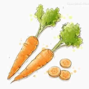 Cắt cà rốt thành miếng à